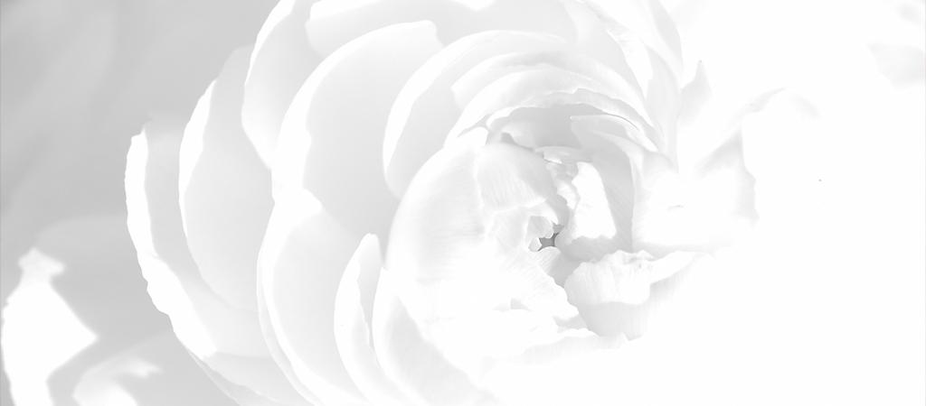 Значение цвета белый