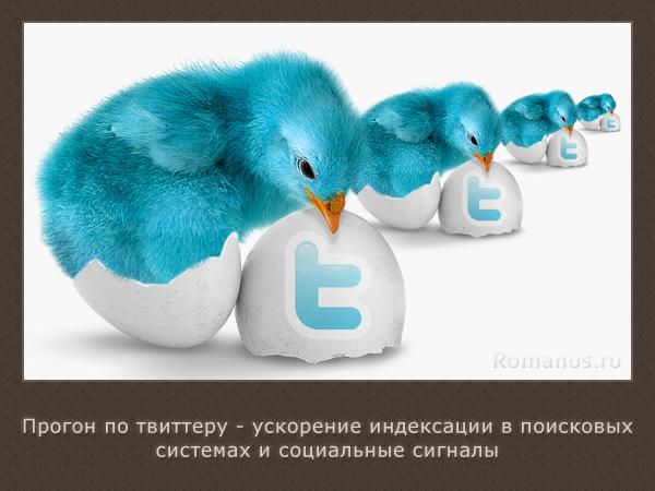 Ускорение индексации Твиттером