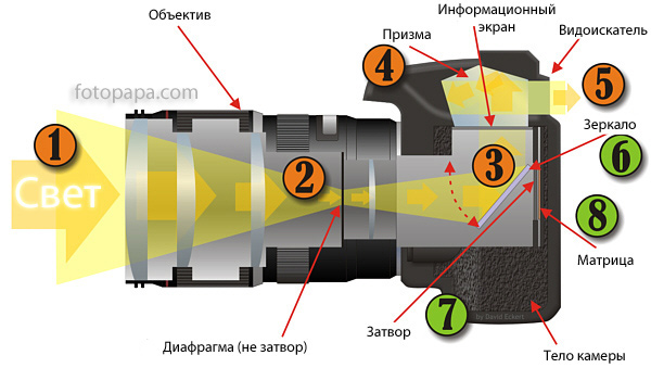 zerkalnaya-camera1